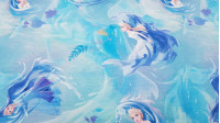 French Terry Frozen Nokk fabric - French Terry licensed Disney fabric with beautiful drawings of Elsa and her horse Nokk from the movie Frozen 2. The French Terry fabric can be used to make light-duty sweatshirts, t-shirts, dresses, skirts... The fab